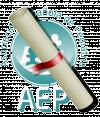 Becas de la AEP